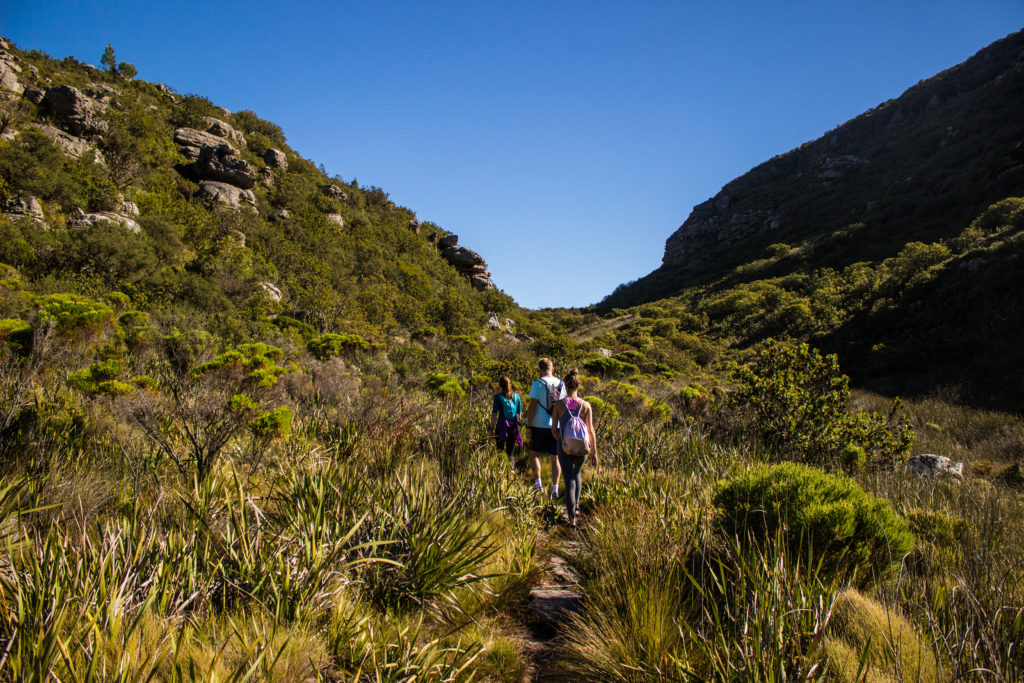hiking trails on table mountain