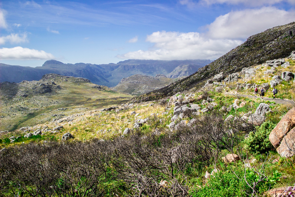 table mountain national park overlooking hout bay