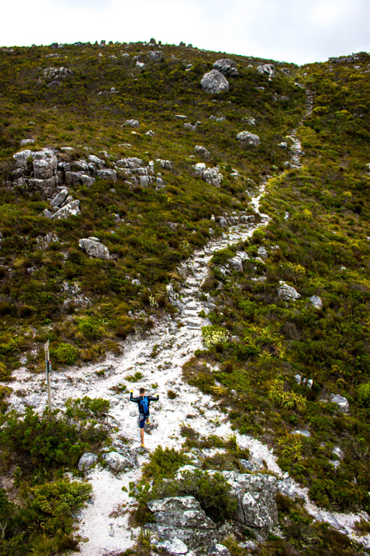 table mountain best hikes
