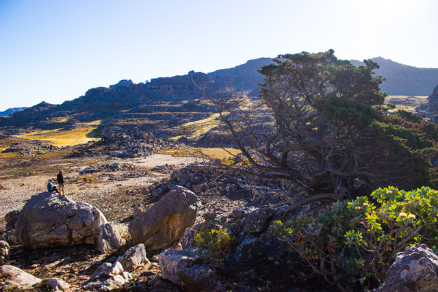 conquer the cape cederberg multi-day hike