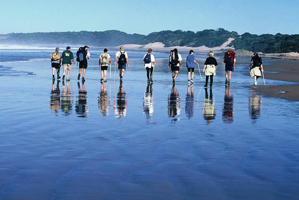 Oyster catcher trail conquer the cape